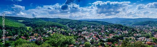 panroama of historical city wernigerode - 80967212
