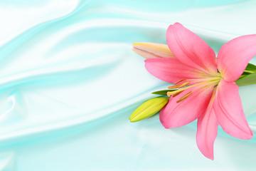 綺麗なユリの花