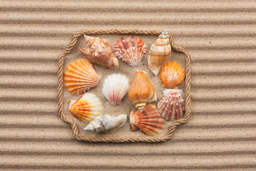 Beautiful frame made of rope and sea shells on the sand with tex