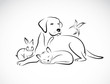 Vector group of pets - Dog, cat, bird, rabbit, isolated on white - 80976470