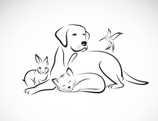 Vector group of pets - Dog, cat, bird, rabbit, isolated on white