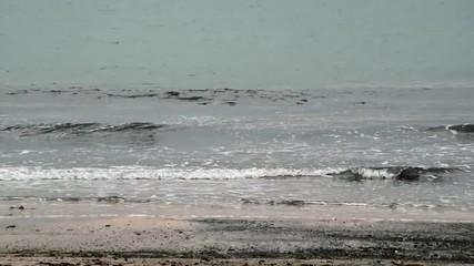 浜辺に押し寄せる波