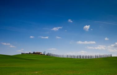 Viale con cipressi in Toscana