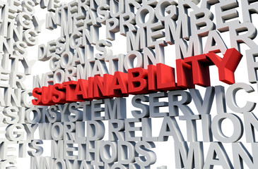SUSTAINABILITY Word in red, 3d illustration.