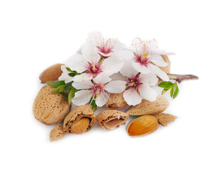 Almonds with a sprig on white.