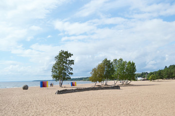 The beach on the Baltic Sea.