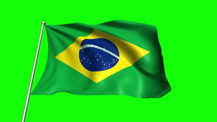 Brazil flag with fabric structure (loop, green background)