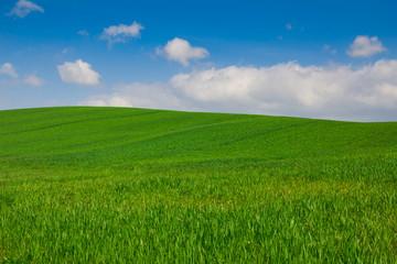 Paesaggio rurale tipico della Val d'Orcia - Toscana