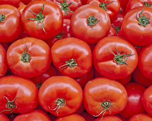 organic red tomatoes closeup at the local market