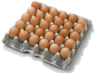 Cardboard egg box with thirty brown eggs isolated