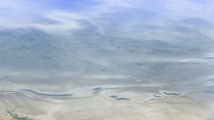 Lake Shore Closeup