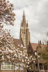 Spring time - Our Lady Church, Brugge, Belgium.