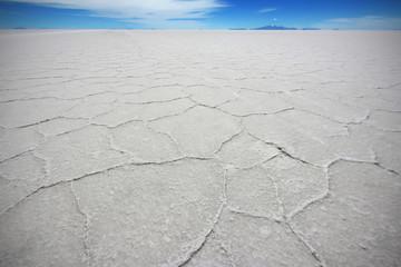 The salt crystals