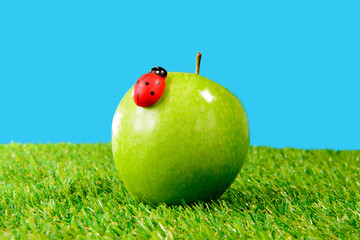 a green apple in the grass