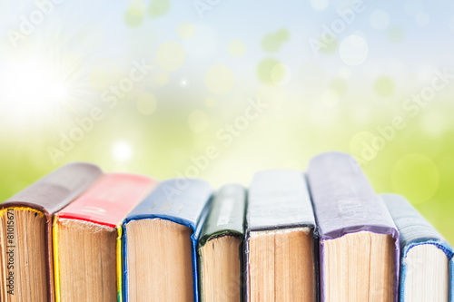 Stack of textbooks - 81015671