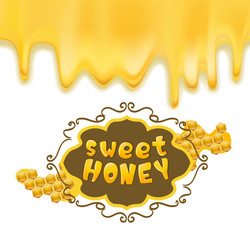 melting honey and frame with honeycombs. vector illustration