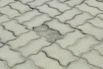 Brick worm on the walkway