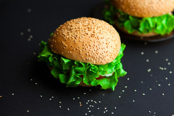 Homemade hamburger with fresh green lettuce, tomato and red onio