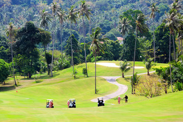 Golf cars on the golf course