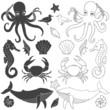 Sea animals - 81027230