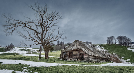 Landscape with abandoned wooden barn