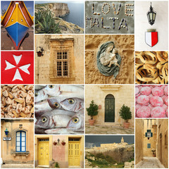 maltese images