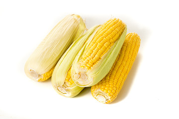 Corn on the cob kernels on white isolated background
