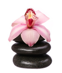 massage basalt stones and orchid flower isolated on white backgr