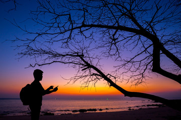 Silhouette man using smartphone with dead tree and sunset beach