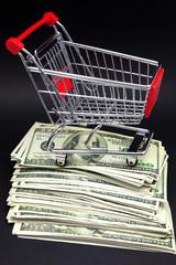 carro compra y billetes de cien dólares