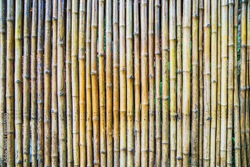 In de dag Bamboo Natural bamboo background.