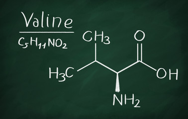 Chemical formula of Valine on a blackboard