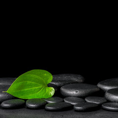 spa background of zen stones and green leaf on black background