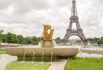 The Eiffel Tower from Trocadero Park, Paris