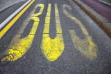 City bus transport lane sign on the asphalt road