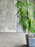 Green tropical plant in a gray room