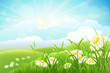 Summer meadow landscape with grass, flowers, hills, and sun