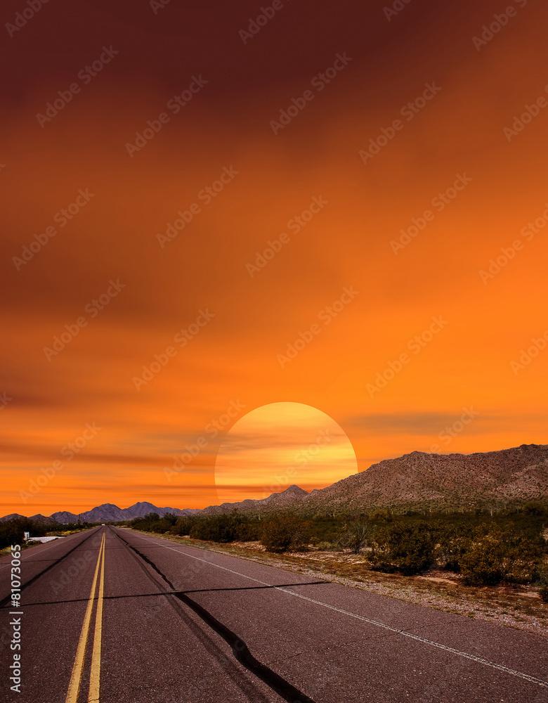 autostrada pustynia drzewa - powiększenie