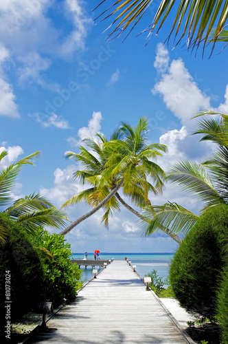 The sunny tropical lagoon on Maldives island - 81073024