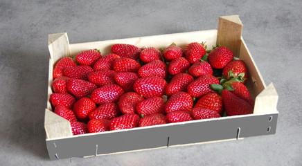 plateau de fraises