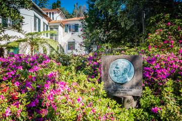 Botanischer Garten Funchal Madeira im Frühling