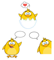 Funny Yellow Chick Character Different Poses 3. Collection Set