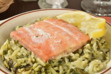 Wile salmon fillet