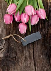 Tulpen, Schieferschild