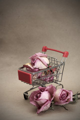 Prostitution concept. Dried roses in pushcart