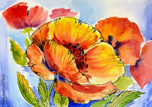 watercolor painting of a bouquet of poppies - 81079894