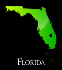 Florida green shiny map