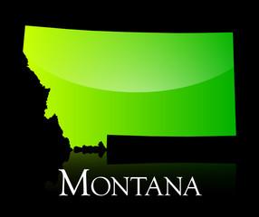 Montana green shiny map