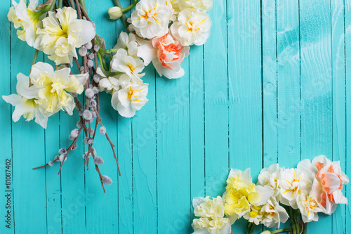 Foto op Canvas Narcis Background with fresh daffodils and willow flowers
