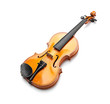 violin on white background - 81091649